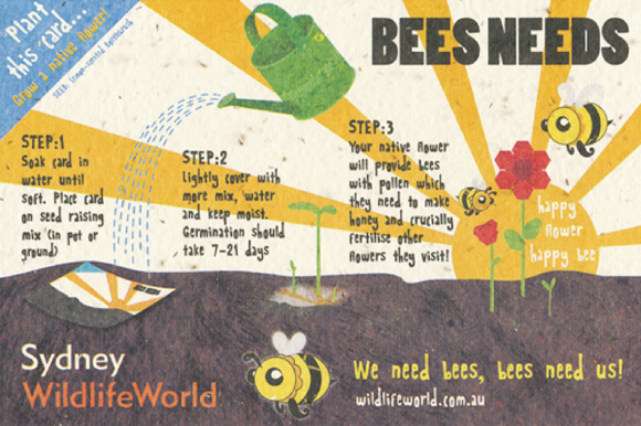 BEES Needs postcard