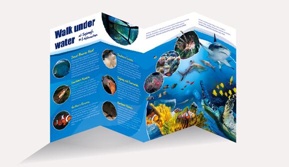 Sydney Aquarium Brochure2